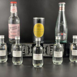 Online-Gin-Tasting